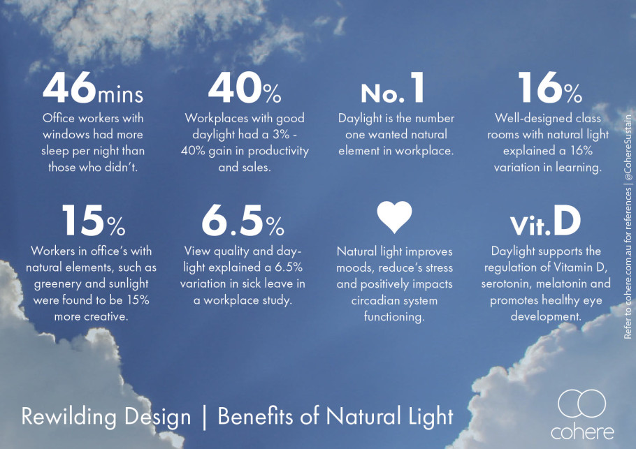 Rewilding Design Natural Light